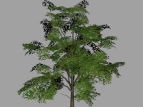 景观树 游戏树 树木