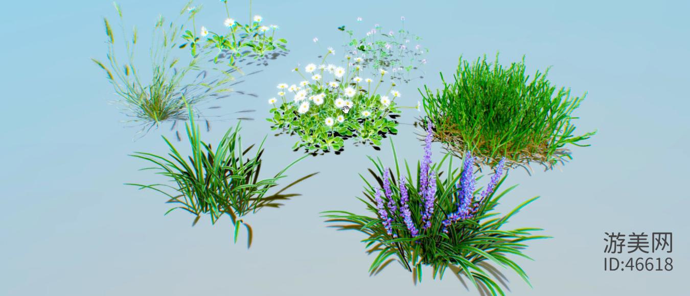 地面植物包