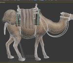 超写实骆驼,有动画骨骼绑定