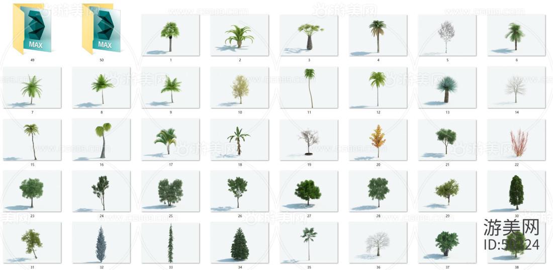 (第十一版)做一套非常不错的50个精品树木合集,内含各类树木