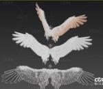 三套带绑定的影视级翅膀 天使翅膀 恶魔翅膀