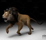 狮子带一套动作