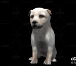 小奶狗玩耍模型