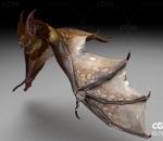 蝙蝠带动作一套