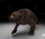 棕熊带一套动作