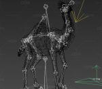 单峰骆驼动作一套