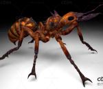 火蚂蚁带动作一套