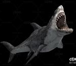 鲨鱼带一套动作