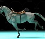 影视级白马带一套动作