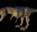 恐龙 霸王龙变种
