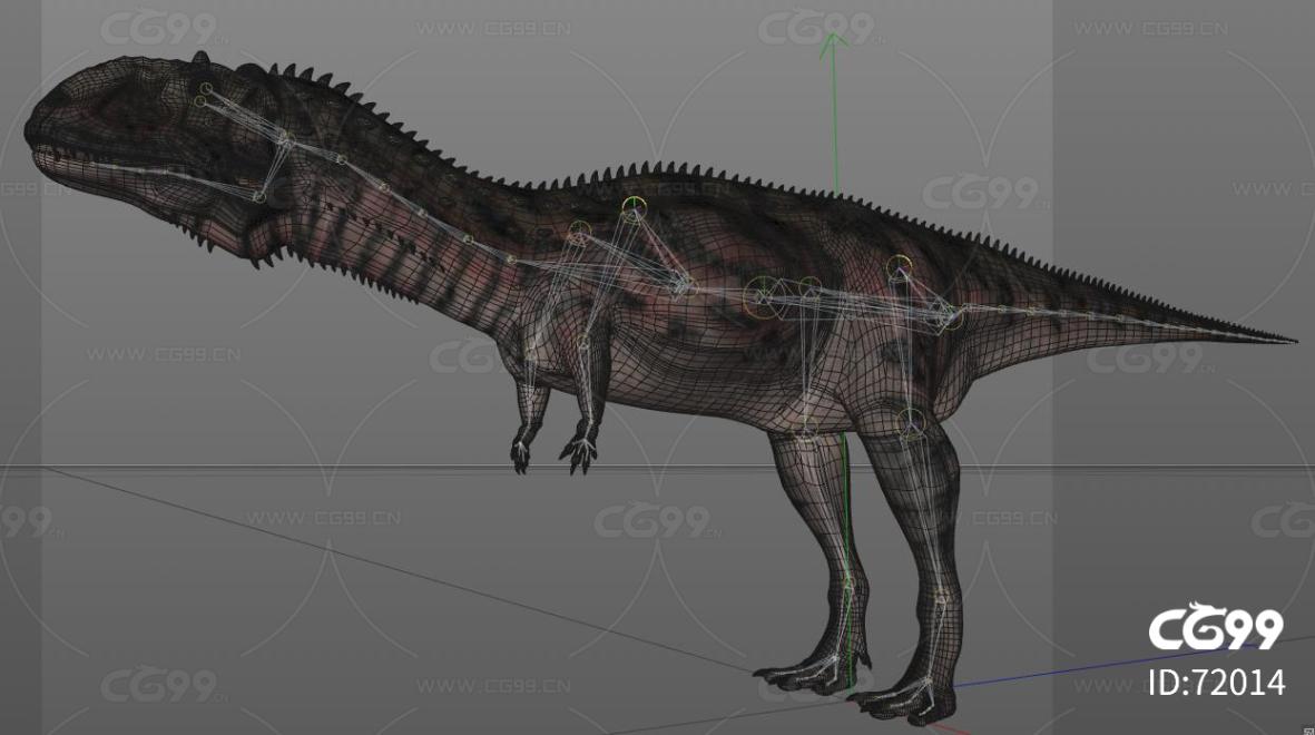 恐龙 玛君龙