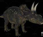 三角龙 恐龙