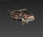 大海食人鱼带200帧动画