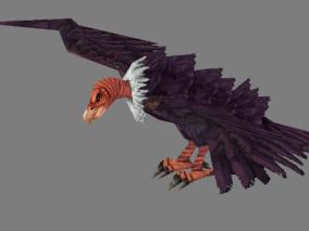 秃鹫cg模型
