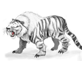 老虎cg模型