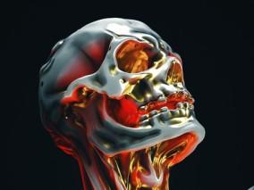 人体3d模型