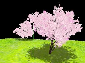 樱花地,花园,MMD模型