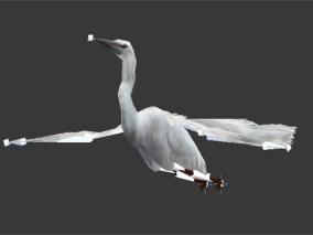 白鹭2【带骨骼动画】3D模型