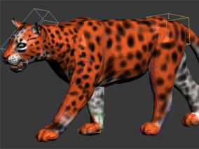 豹子2【带骨骼动画】3D模型