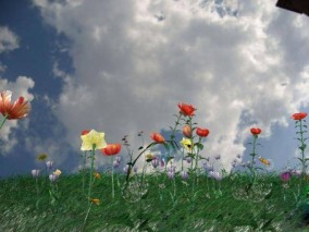 草地 植物 3d模型