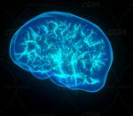 ue4 超酷粒子特效 线粒体特效 大脑粒子特效 火线特效 技能特效 光线特效 虚幻4