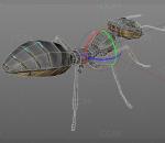 PBR-科幻机械蚂蚁