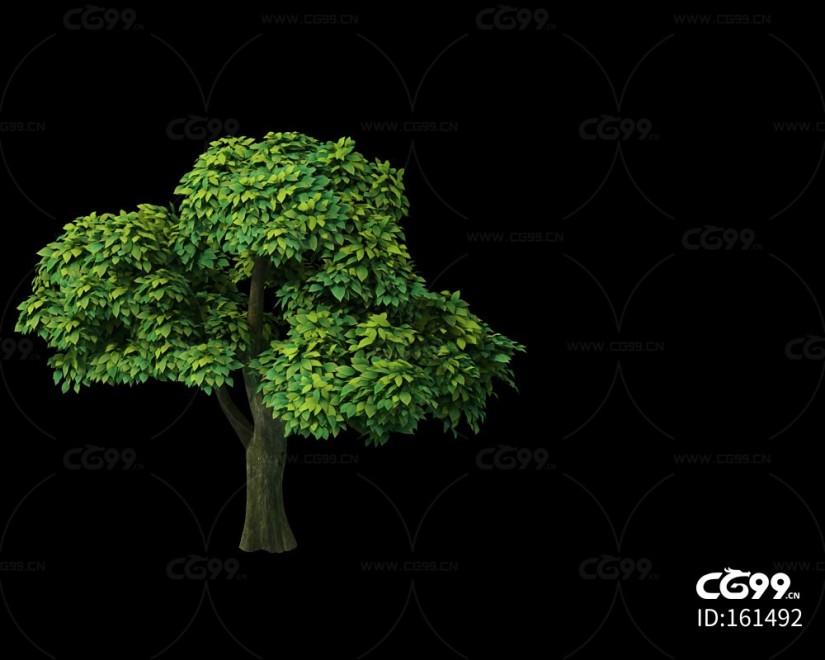三渲二Q版枝叶茂密的树3Dmax模型