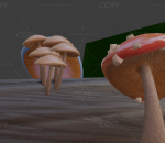 菌类植物 蘑菇 木头 食物