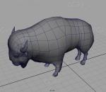 写实野牛 牛科 牛属动物 牦牛 水牛 哺乳动物  公牛