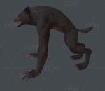 魔兽 怪兽 人形怪物 变异的狼人 血族狼人 变异狼人战士