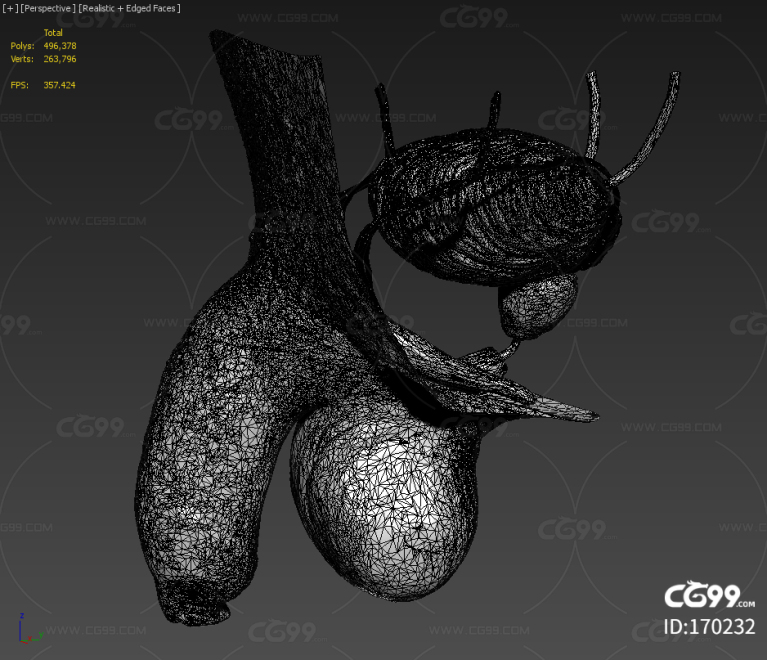 男性生殖 阴茎 海绵体 膀胱 输精管 睾丸 耻骨 龟头 包皮 前列腺 乙状结肠 直肠 精囊 射精管