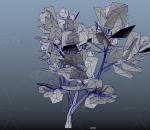 白桦树 植物 树木 大树 绿叶树 杨树 白杨树 桦树 园林植物 植物树木