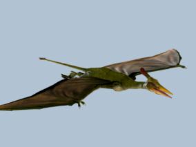 翼龙3d模型