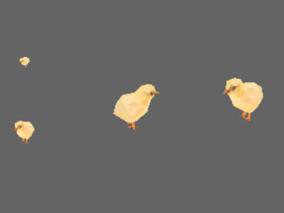 可爱小鸡max模型