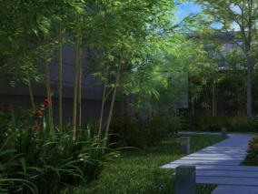 园林植物竹子max模型