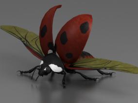 昆虫3d模型