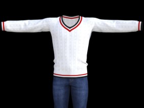 套装   毛衣  牛仔裤 服装 男士服装