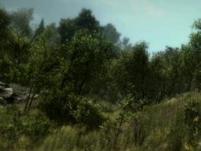 unity模型 真实森林 树木花草 植物绿地 山谷
