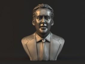 尼古拉斯凯奇头部雕像