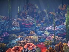 海底生物 3d模型