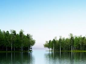 现代河流两岸树木3D模型