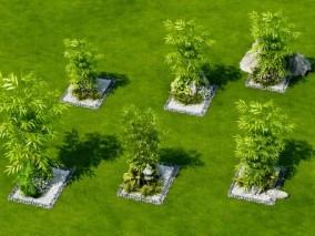 现代竹子3D模型