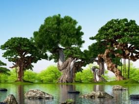 现代树木河边榕树3D模型