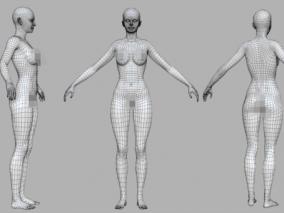 写实女人体 基础模型 美女基础身体 人体 裸模 3d模型
