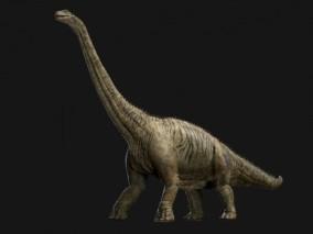 次时代PBR超写实长颈龙CG模型