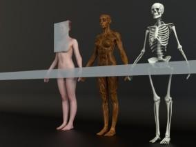 超精细的女性人体扫描模型