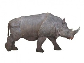 犀牛 3d模型