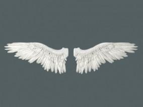 精致翅膀3D模型