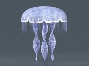 水母 浮游生物 刺丝胞动物 钵水母纲 十字水母纲 立方 3d模型