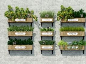 现代墙挂式绿植盆栽3d模型